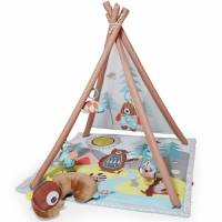 Skip Hop Tents & Trails Activity Gym