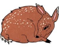 Lorena Canals Kinderteppich aus Wolle, Bella the Deer