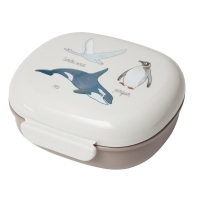 Sebra Lunch Box, Arctic Animal