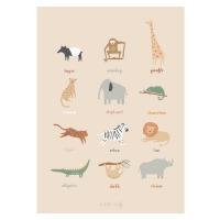 Sebra Poster, Wildtiere