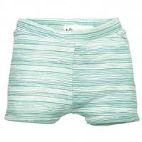 Riffle Amsterdam Shorts, stripe green