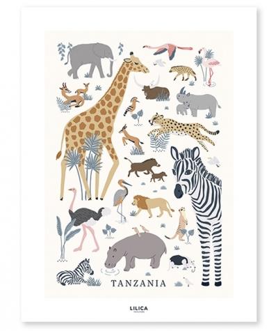 Lilipinso Poster, Tiere des Dschungels