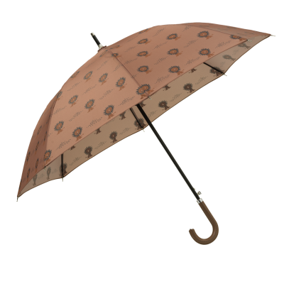 Fresk Kinder Regenschirm, Löwe