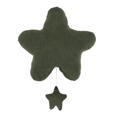 Trixie Spieluhr Stern, Ribble Moss