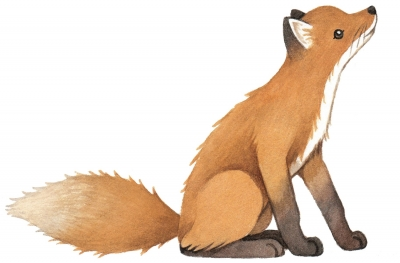 Lilipinso Wandsticker Dekoration, VINTAGE FOX